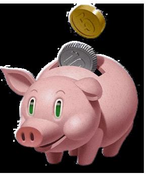 donateurs_pig