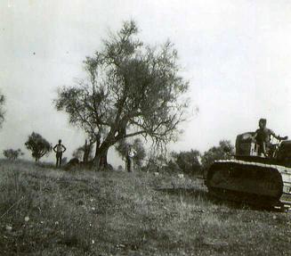 Le SERVAN  arachage olivier 1