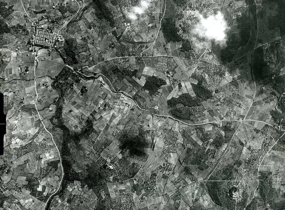 Le SERVAN   vue aérienne ds vignobles 1950